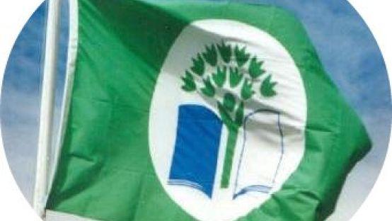 Green School Flag