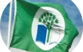 Green School Flag