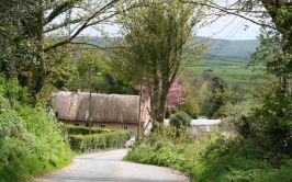 Image of thatched cottage in countryside